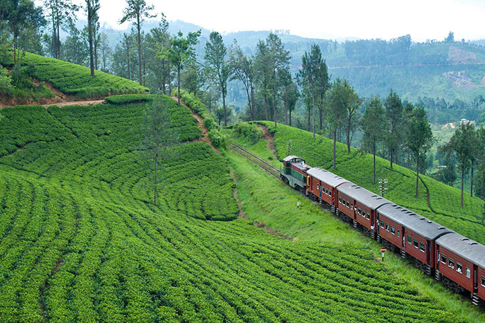 Sri Lanka's Most Scenic Train Ride in the World—For Less Than $1